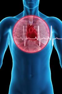 Cardiovascular Disease: Implications for the Physical and Occupational Therapist