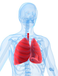 Management of Patients with Pulmonary Disease